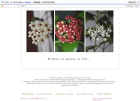 hoyapassion.blogspot.com