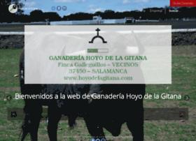 hoyodelagitana.com