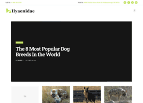 hyaenidae.org