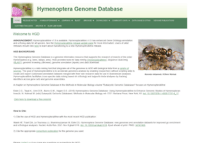 hymenopteragenome.org