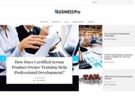 ibusiness-pro.com