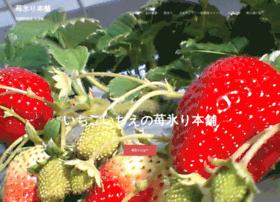 ichigoori.com