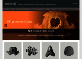 idigfossils.org