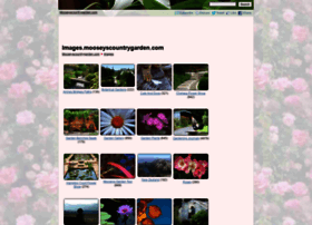 images.mooseyscountrygarden.com