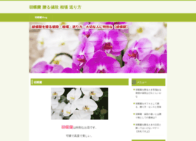 imatgecreativa.com