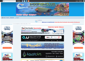 indofishclub.forumid.net