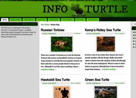 Infoturtle.com