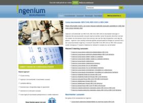ingeniumbedrijfsadvies.nl