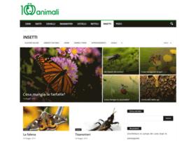 insetti.org