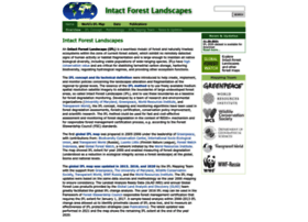intactforests.org