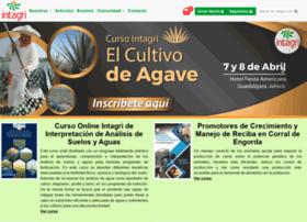 intagri.com.mx