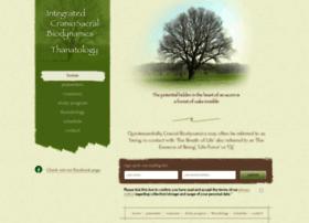 integrated-cranial-workshop.com
