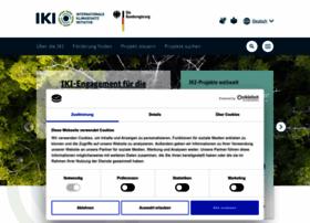 international-climate-initiative.com
