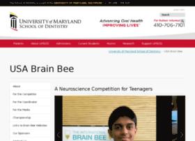 internationalbrainbee.com