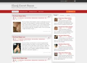 internetelazig.com