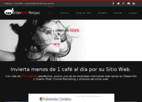 internetninjas.com.mx