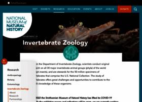 invertebrates.si.edu