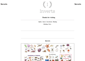 inverts.com.au