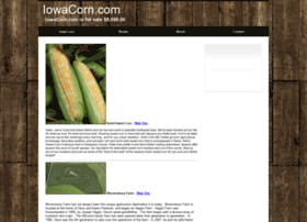 iowacorn.com