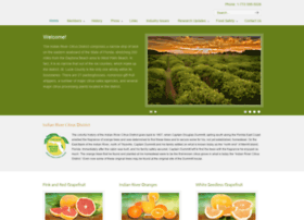 ircitrusleague.org