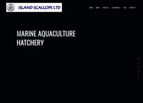 islandscallops.com