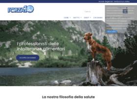 ita.forza10.com