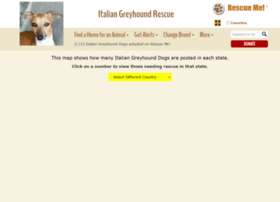 italiangreyhound.rescueme.org