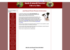 jack-russell-terrier-pictures.com
