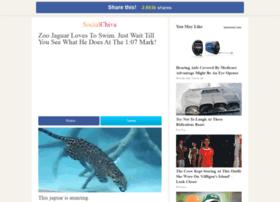 jaguar.socialchive.com