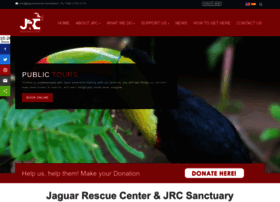 jaguarrescue.foundation