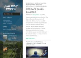 Budidaya Pala dan budidaya tanaman Pala - Info Berita Terbaru