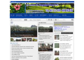 jual-tanaman-hias.com