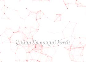 juliancompagniportis.com