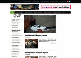 kabootarbaaz1.blogspot.com