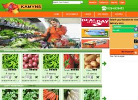 kamyns.com