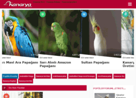 kanarya.com.tr