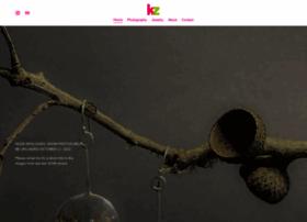 katizweig.com