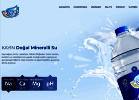 kayinsu.com