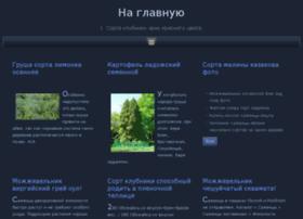 kigaz.ru
