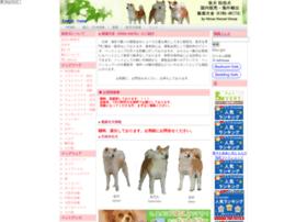 king-akita.com