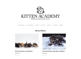 kitten.academy