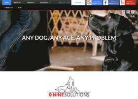kninesolutions.com