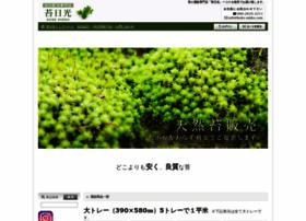 koke-nikko.com
