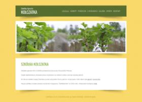 kolczatka.com