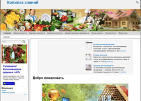 kopilca.ru