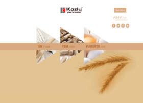 kozlu.com.tr