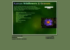 kswildflower.org