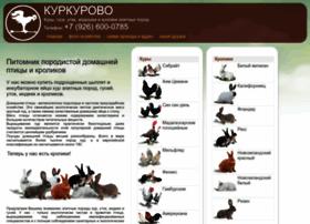 kurkurovo.ru