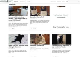 labradorcrazy.com