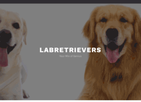 labretriever.net